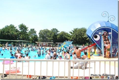 小学生以下プール 賑わっています