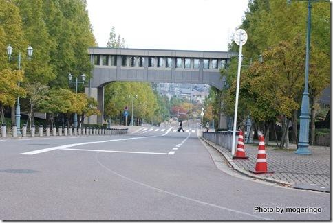 大学内の道路
