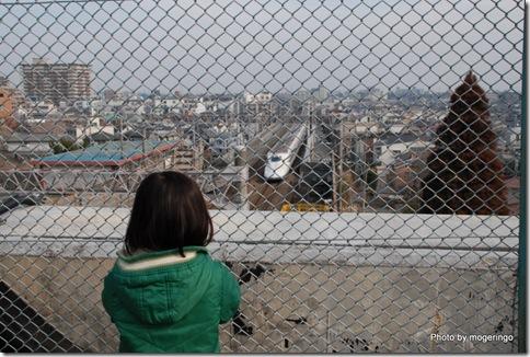 次男も大喜びの新幹線公園