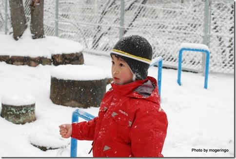 雪の冷たさにビックリの長男