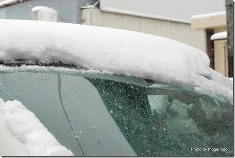 積雪10センチぐらい