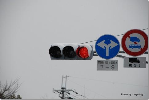 雪を被る信号