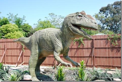 肉食系男子、、じゃなくて恐竜